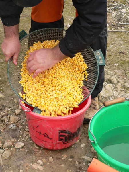 maizes