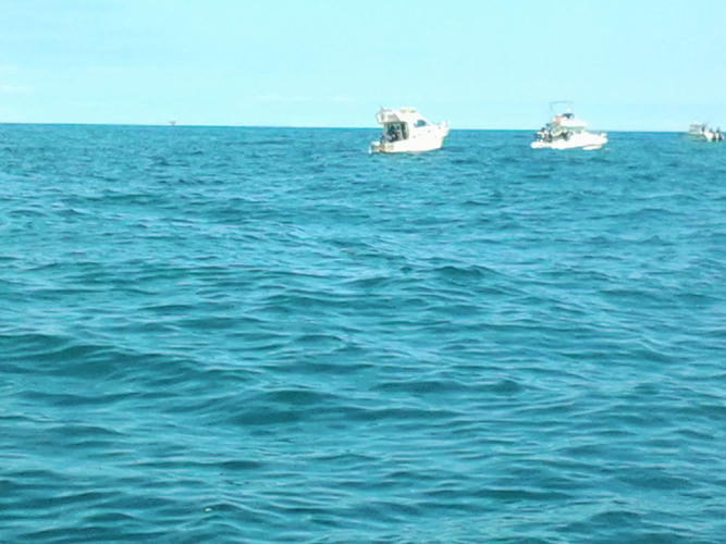 dalla barca Giuria