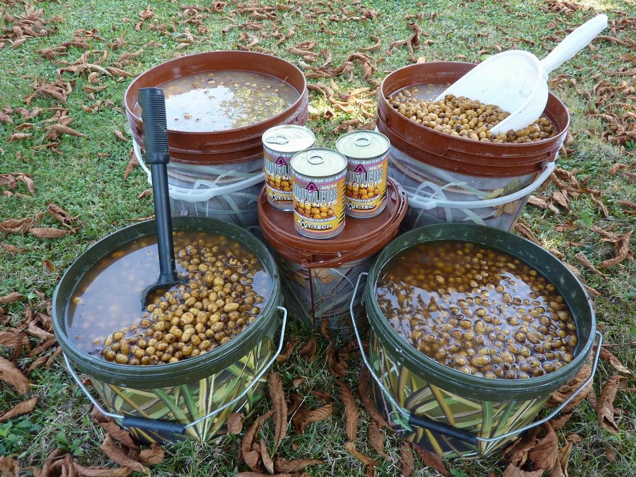 5 tiger nuts