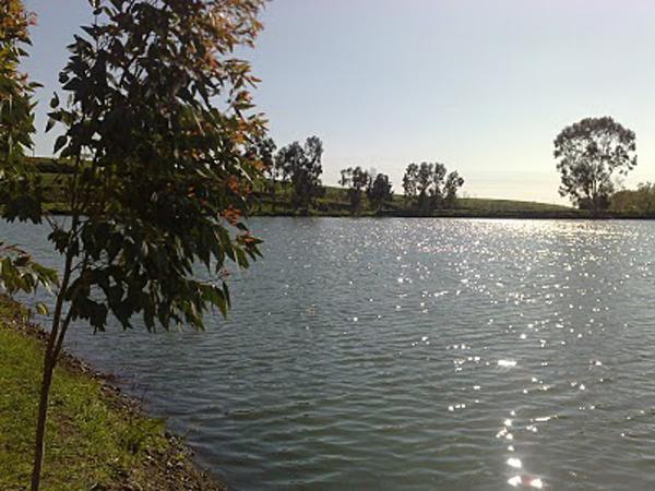 lago eko