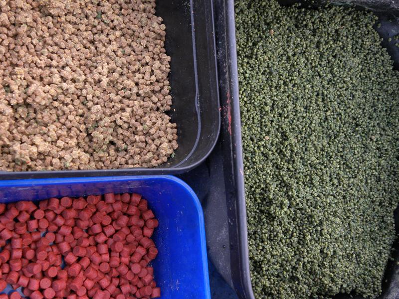 Due tipologie di pellet da pastura e pellet dure da innesco