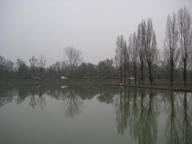 IMG_8330 (FILEminimizer)