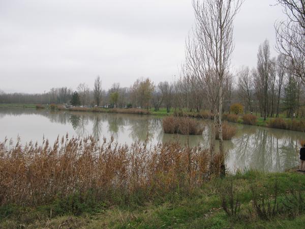 Lago2 BIS