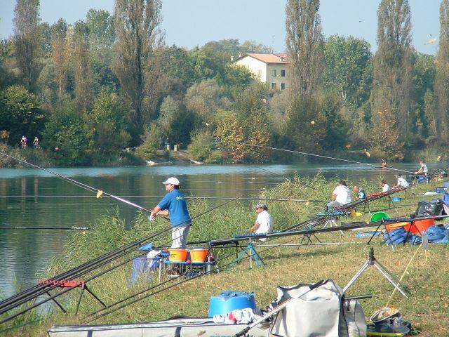 CAMP IT SOCIETA' 2008 - 2650A