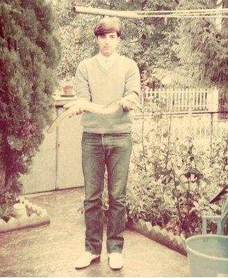 SCARPONI CON ANGUILLA 1984