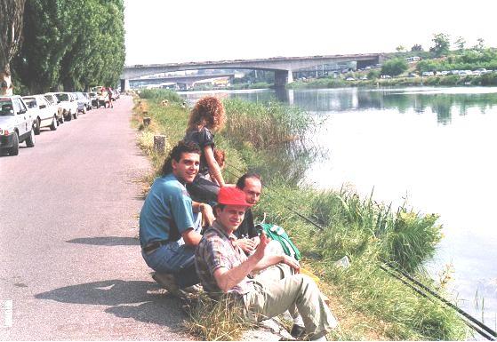 SCARPONI MINCIO 1988 D