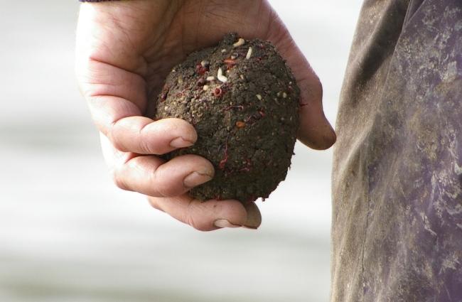 palla di pastura