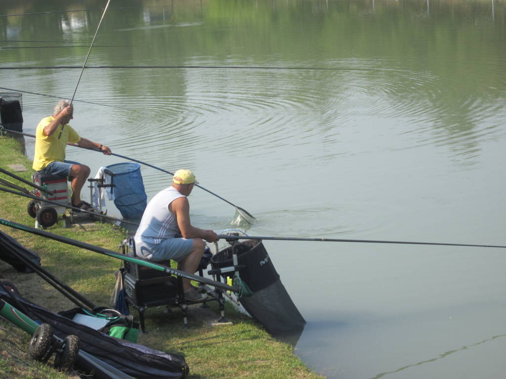pesca (FILEminimizer)