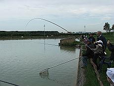 pescare este_24111839_22030